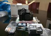 Canon EOS-1D MARK-IV with TS-E 24mm f/3.5L II Tilt-Shift Lens